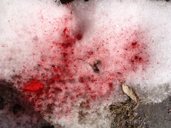 snow (two waves)